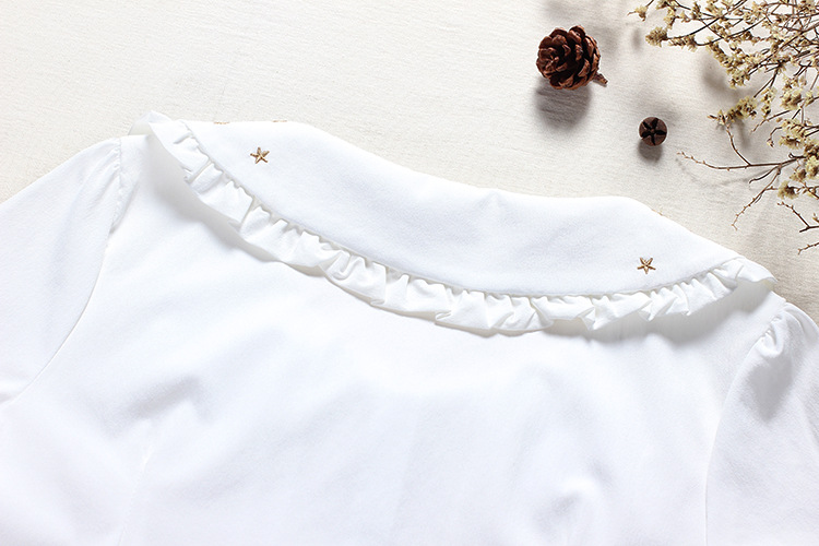 Embroidered Short Sleeves Chiffon Lolita Blouses